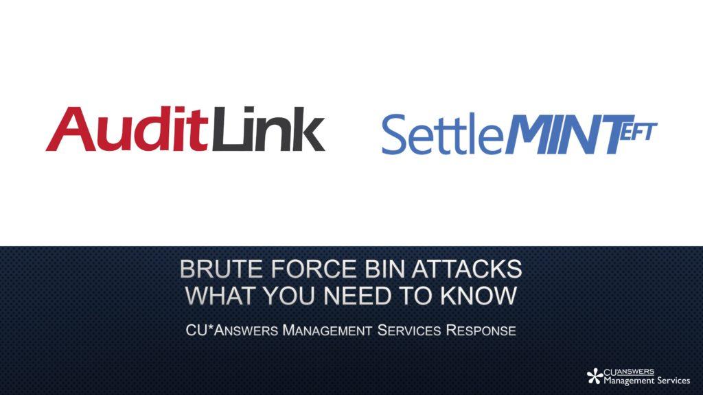 Mitigating Brute Force Bin Attacks Whitepaper