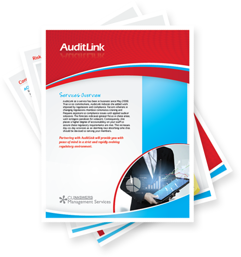 AuditLink overview brochure